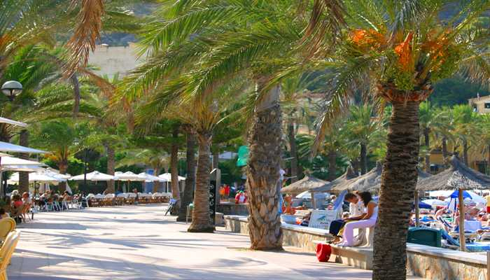 Palmenpromenade Port de Soller